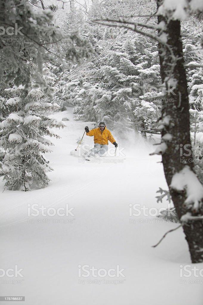 Expert skier skiing powder snow in Stowe, Vermont, USA royalty-free stock photo