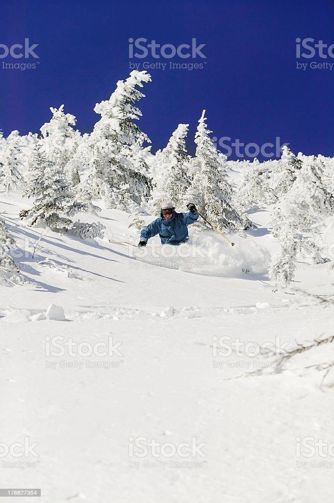 Expert skier skiing powder, Stowe, Vermont, USA stock photo