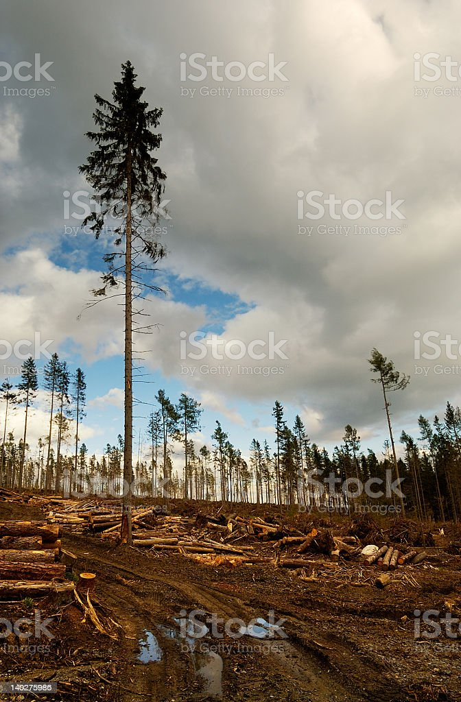 Exploiting Mother Earth royalty-free stock photo
