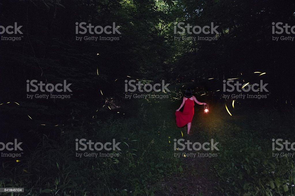 Explore the fireflies stock photo