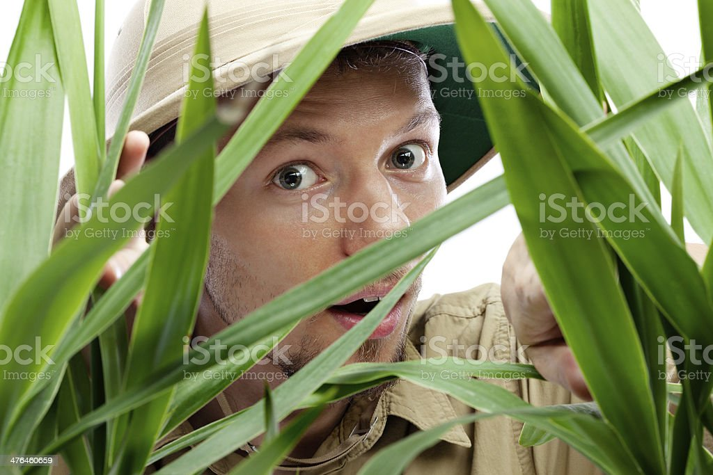 Explorer getting through the jungle royalty-free stock photo