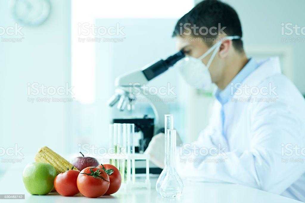 Exploring healthy food stock photo