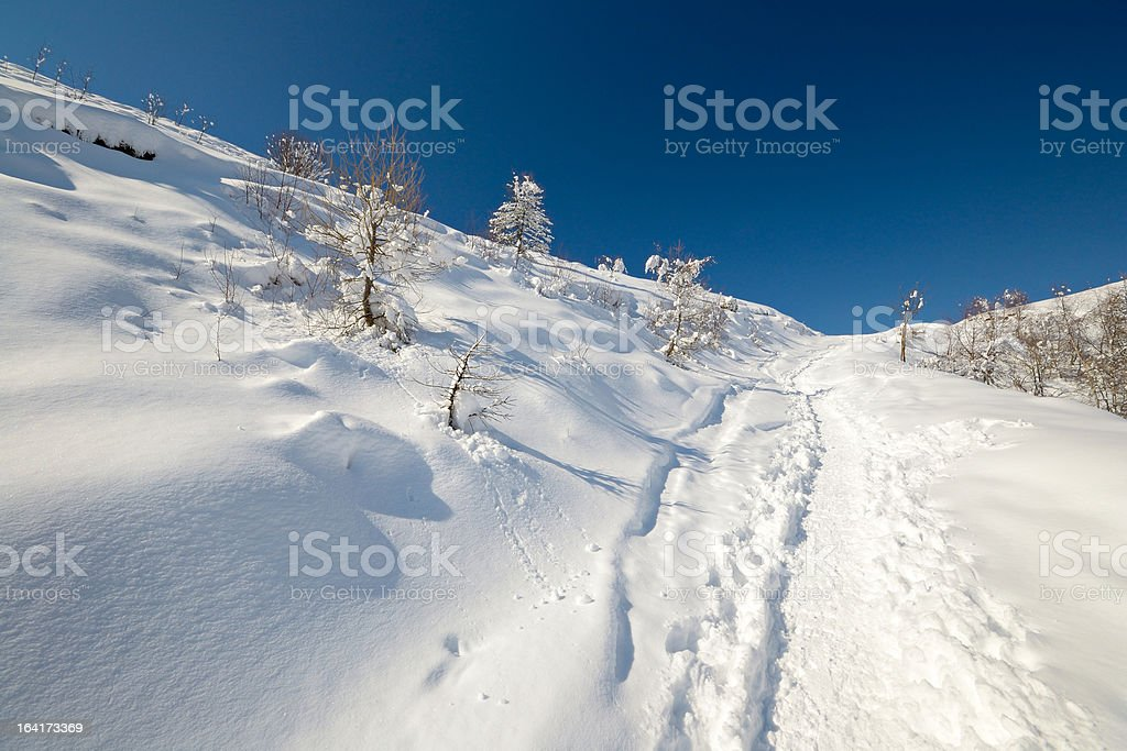 Exploring the Alps by tour skiing royalty-free stock photo
