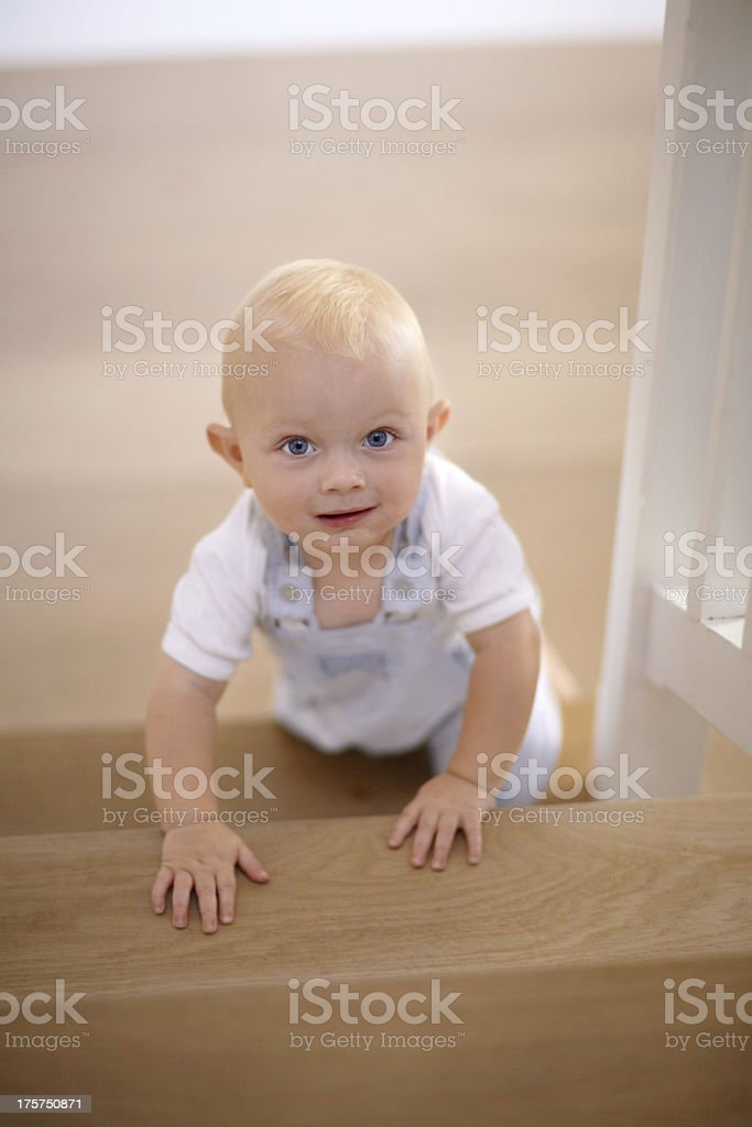 Exploring the house royalty-free stock photo