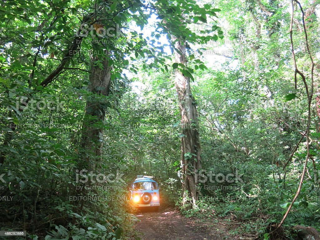 Exploring the Mexican Jungle in an old VW Bus stock photo