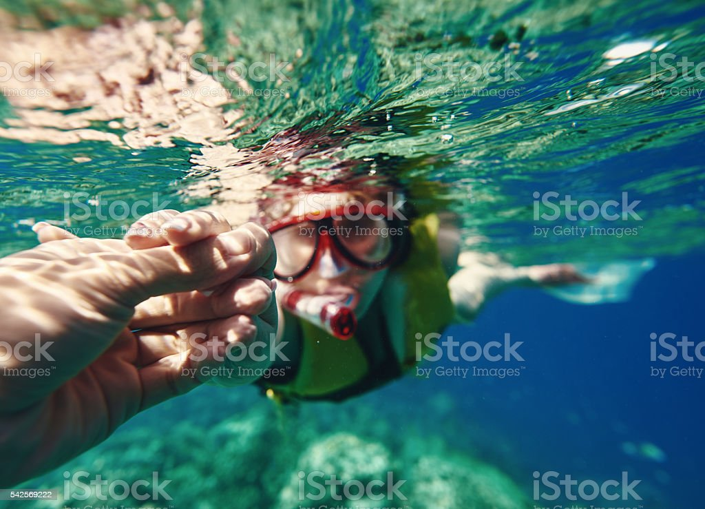 exploring the sea life together stock photo