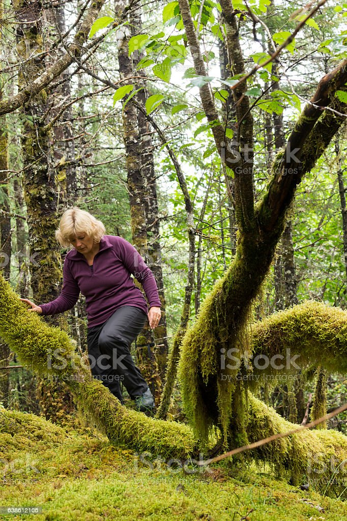 Exploring Tongass National Forest stock photo