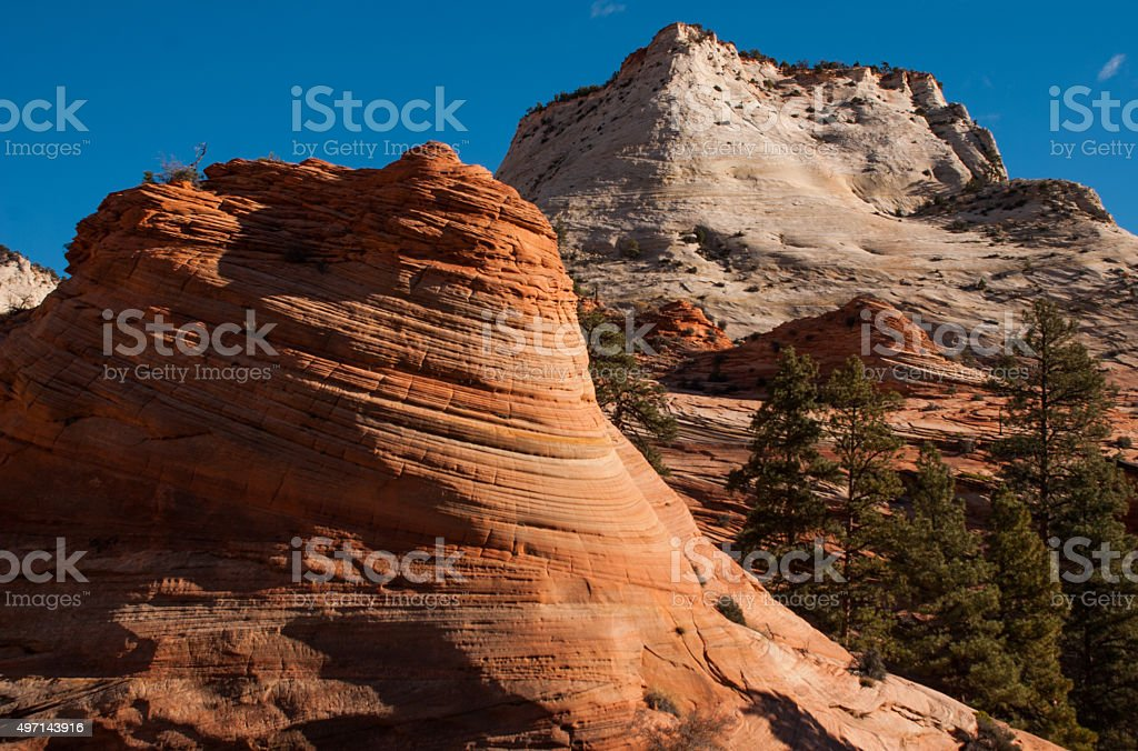 Exposed Navajo Sandstone outcrops Checkerboard Mesa Zion National Park Utah stock photo