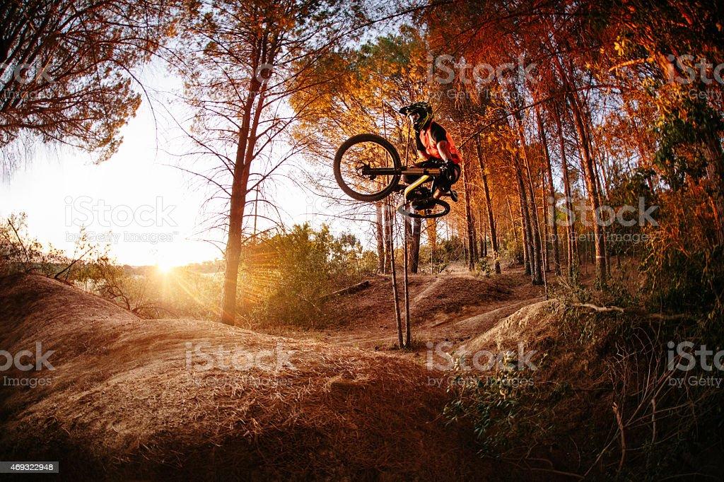 Exteme mountain biker performing aerial maneuvers while dirt jum stock photo