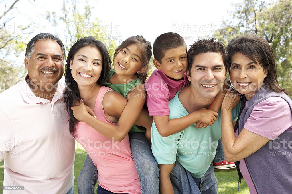 Extended Family Group In Park royalty-free stock photo