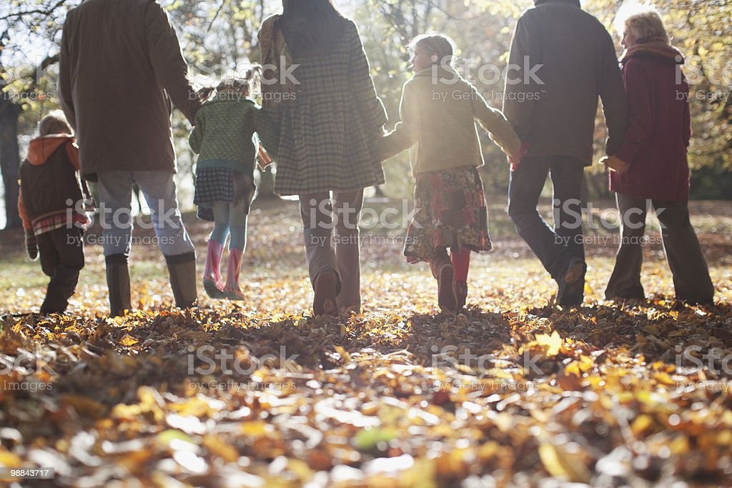 Extended family holding hands and walking outdoors stock photo