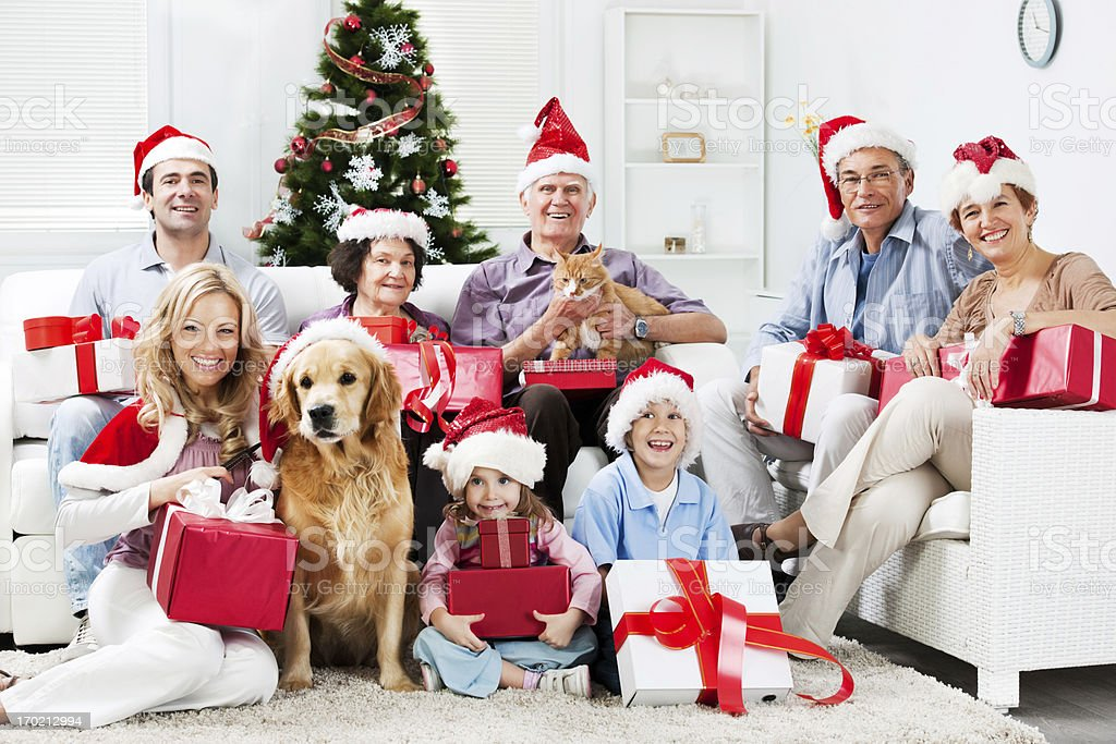 Extended family with their pets celebrating Christmas. royalty-free stock photo