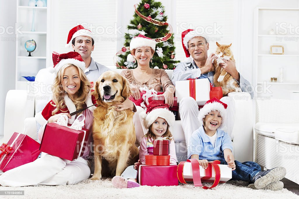 Extended family with their pets celebrating Christmas royalty-free stock photo