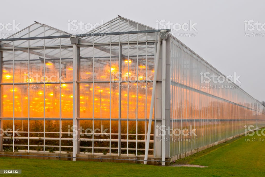 Exterior of a giant commercial glasshouse stock photo