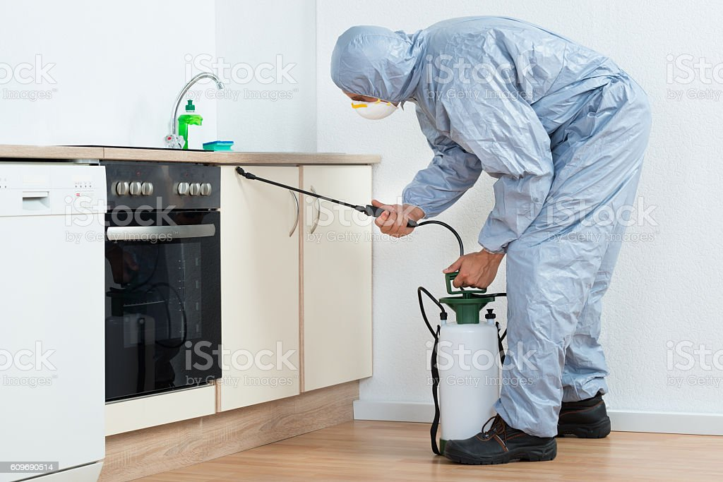 Exterminator Spraying Pesticide On Wooden Cabinet stock photo