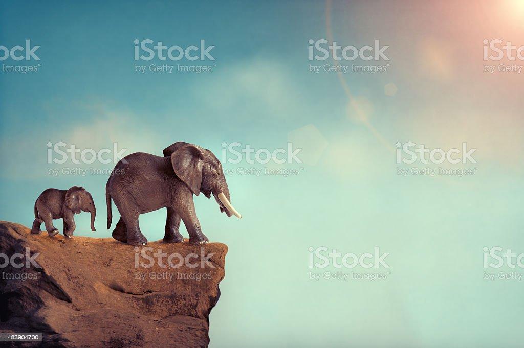 extinction concept elephant family on edge of cliff stock photo
