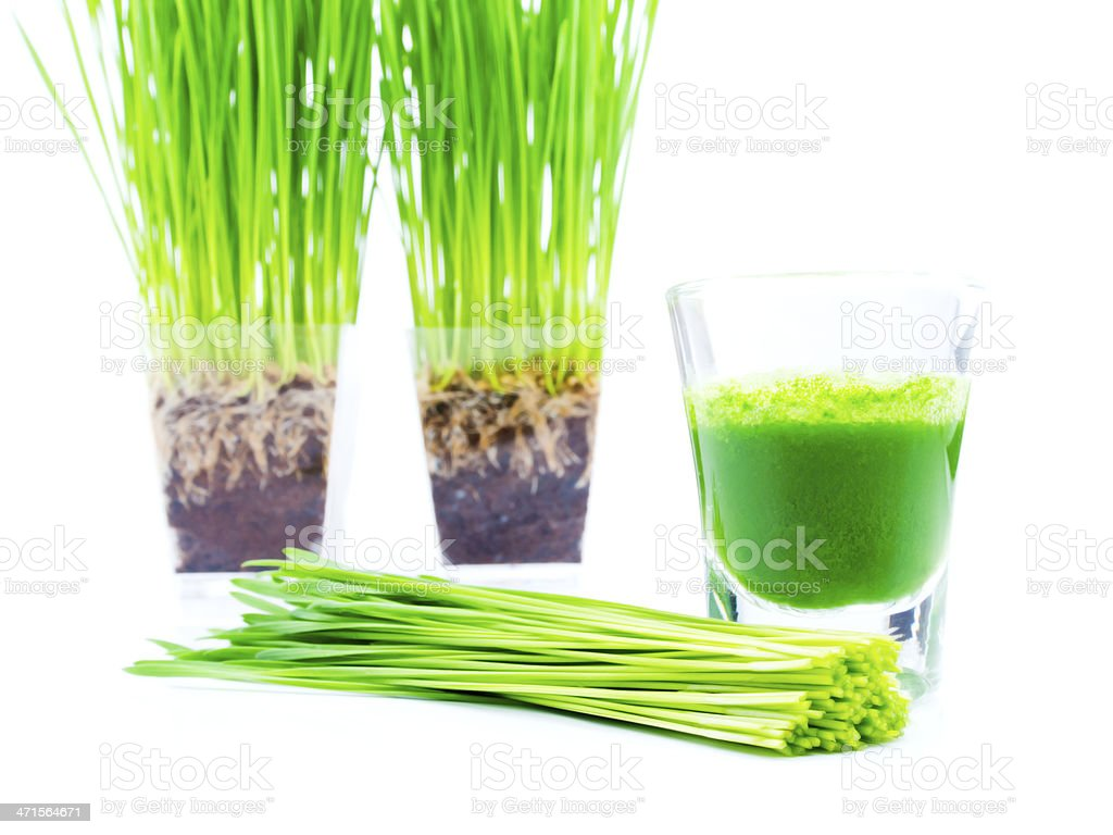 extracted chlorophyll from fresh green sprout stock photo