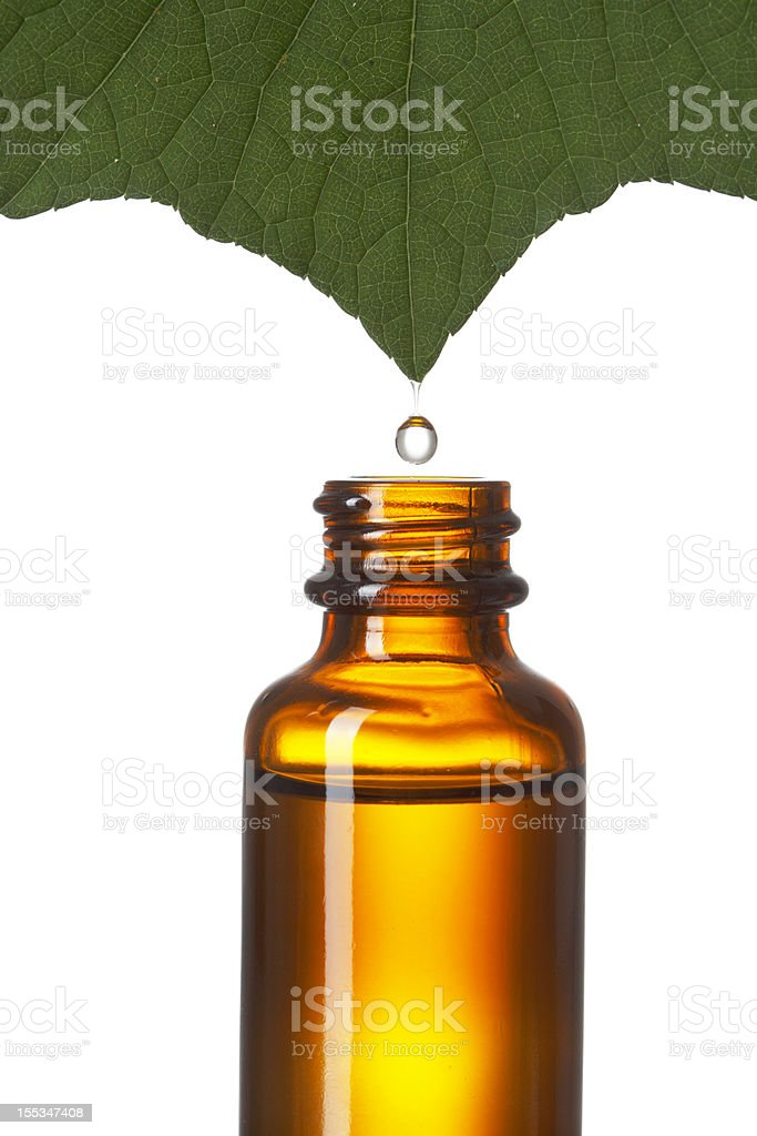 Extracted from Nature royalty-free stock photo