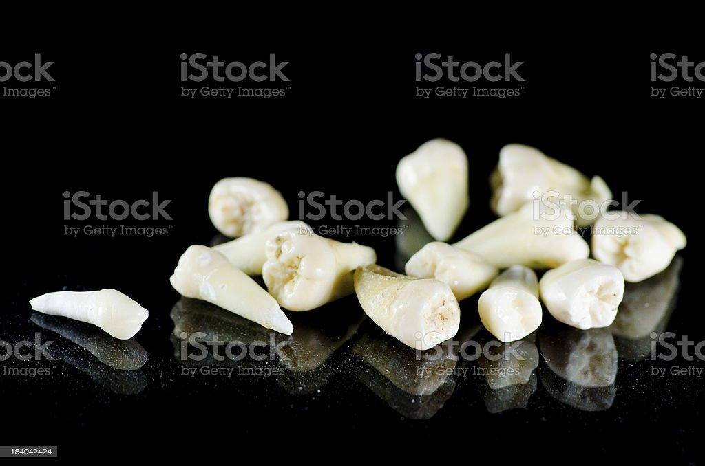 Extracted teeth - isolated black stock photo