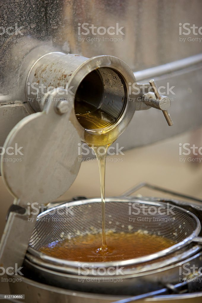 Extracting honey from the honeycomb stock photo