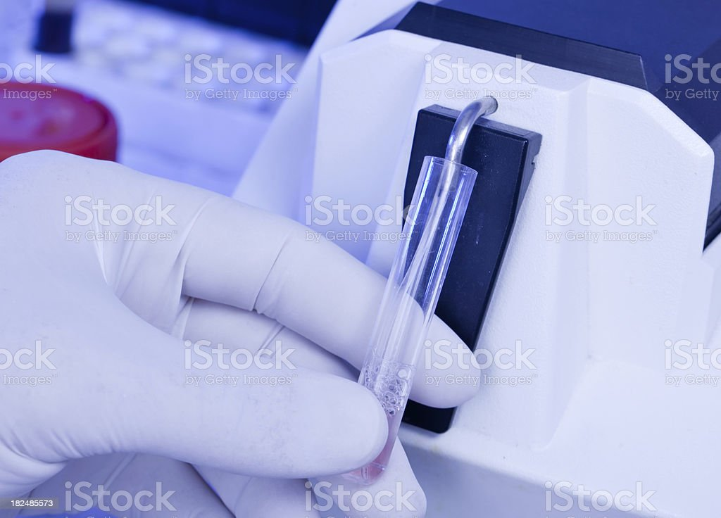 Extracting liquid from vial with pipette royalty-free stock photo