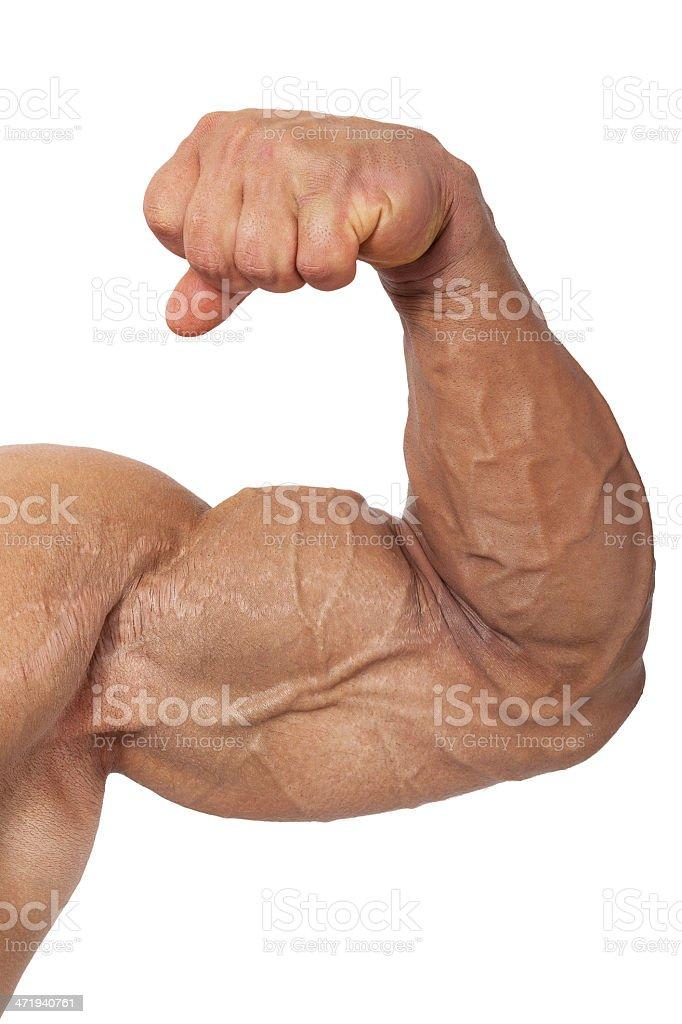 Extreme bodybuilding. stock photo