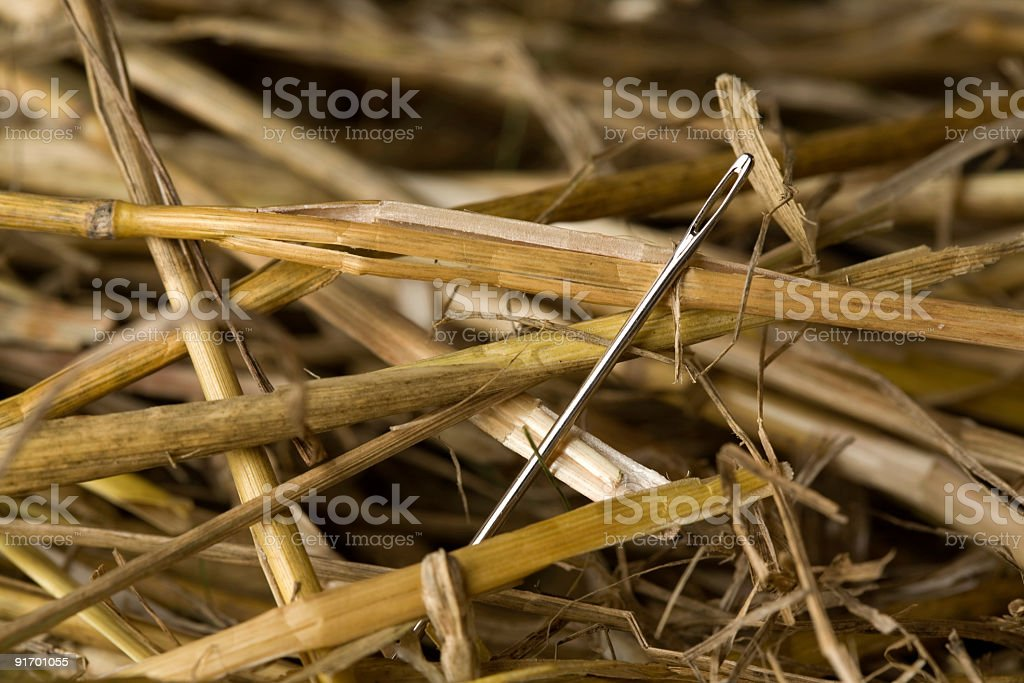 Extreme Closeup of a Needle In A Haystack stock photo