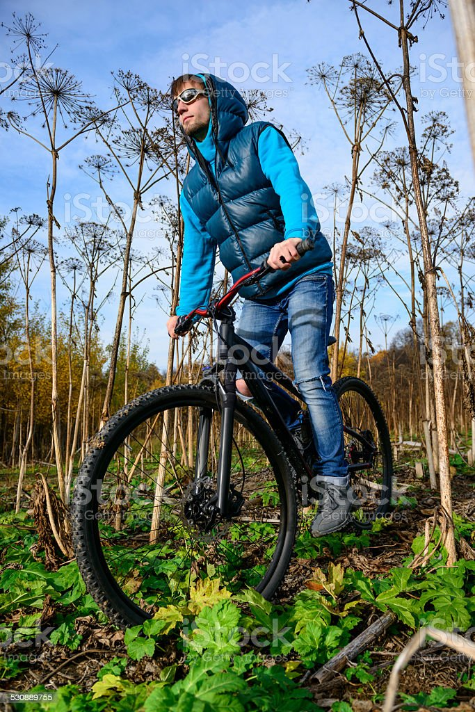 Extreme cyclist in bushes stock photo