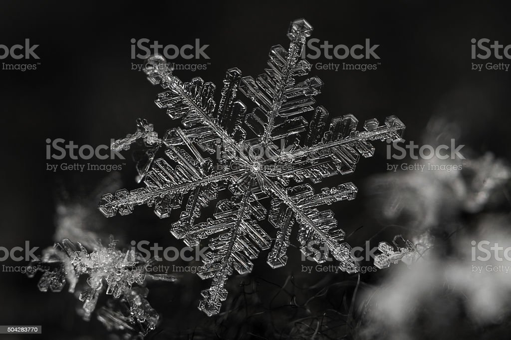 Extreme magnification - Real snowflake stock photo