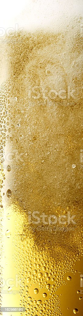 extreme vertical format of a beer fond royalty-free stock photo