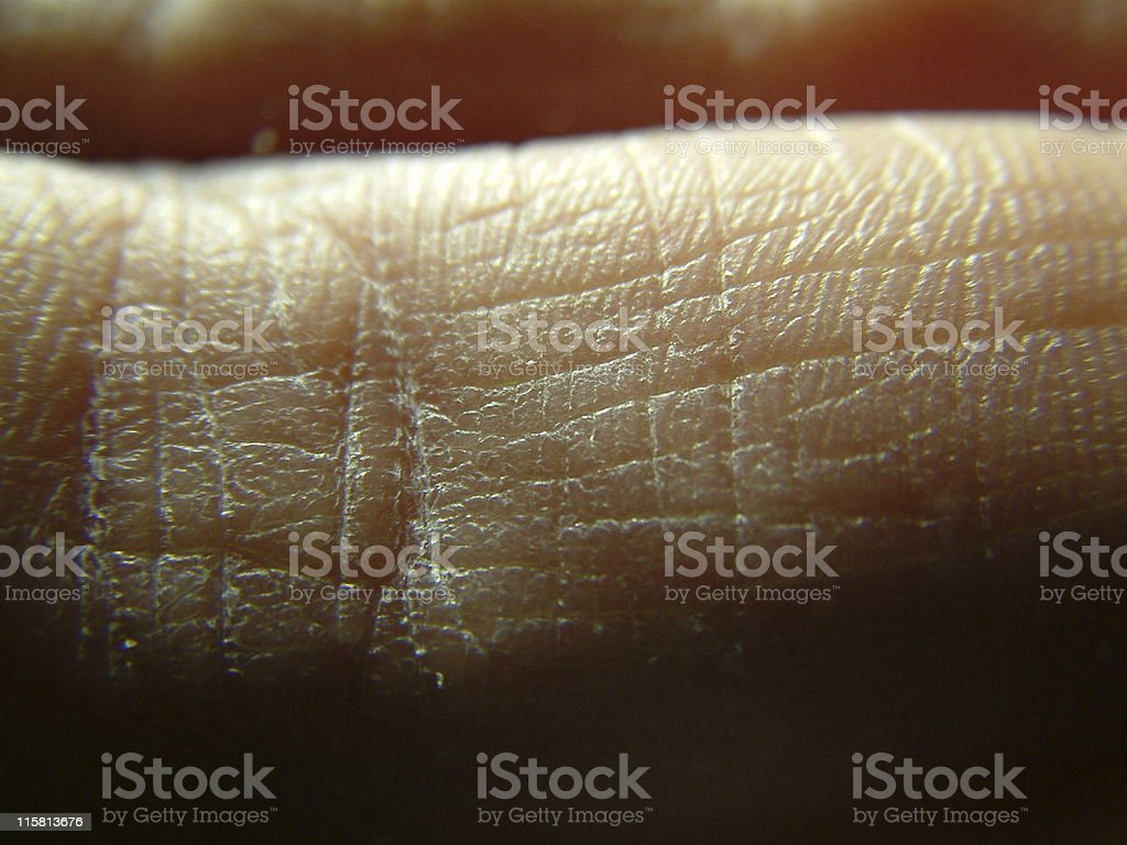 Extremely Close-up Finger royalty-free stock photo