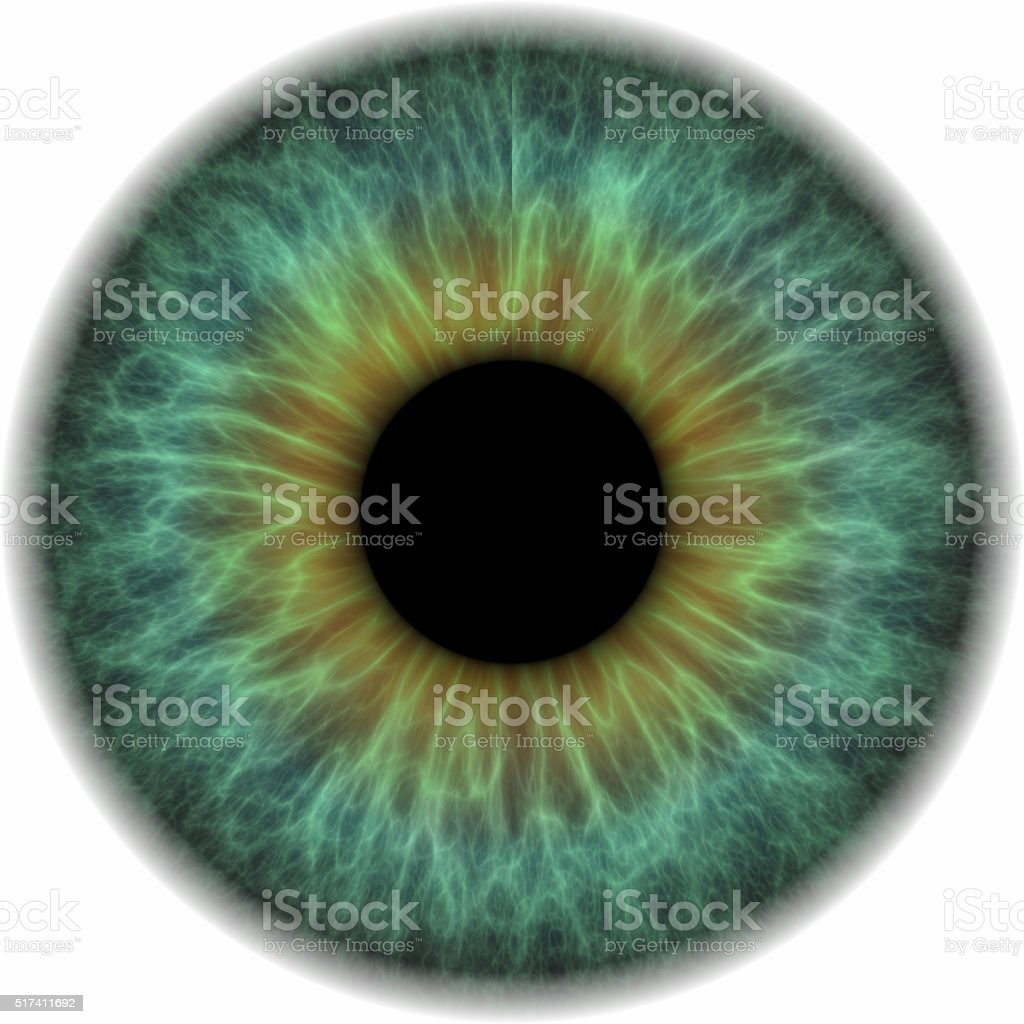 Eye ball isolated on white background stock photo
