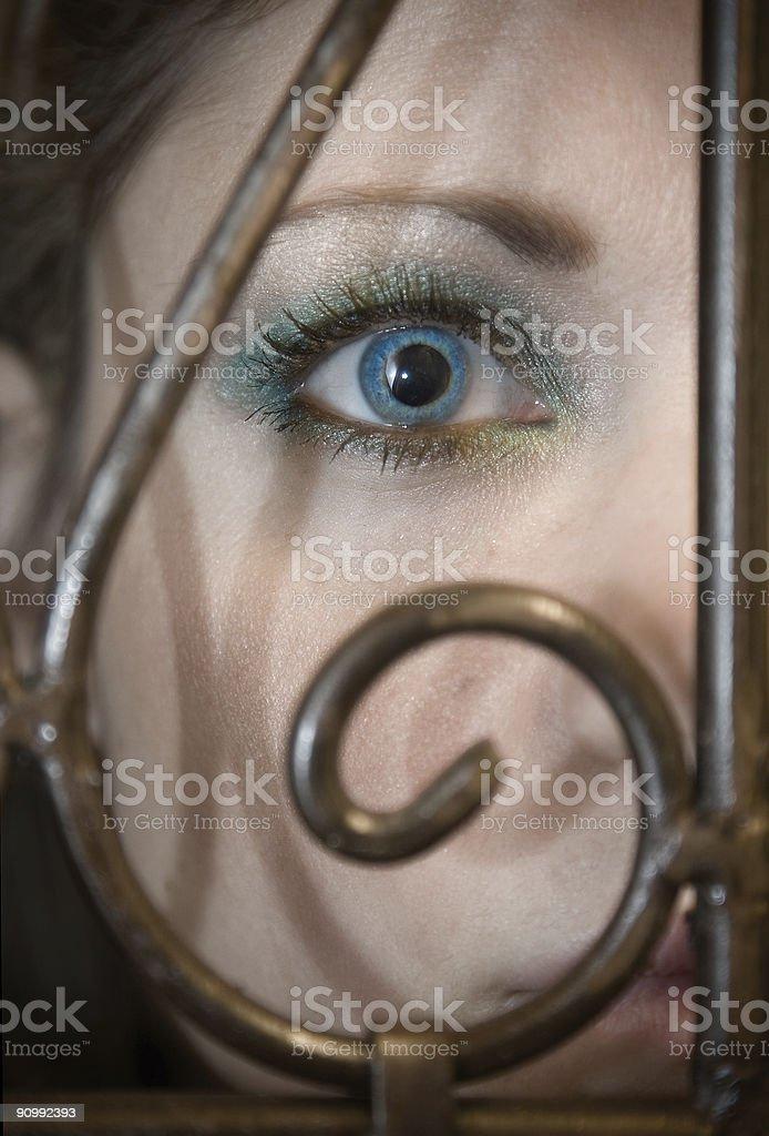 Eye Behind the Gate stock photo