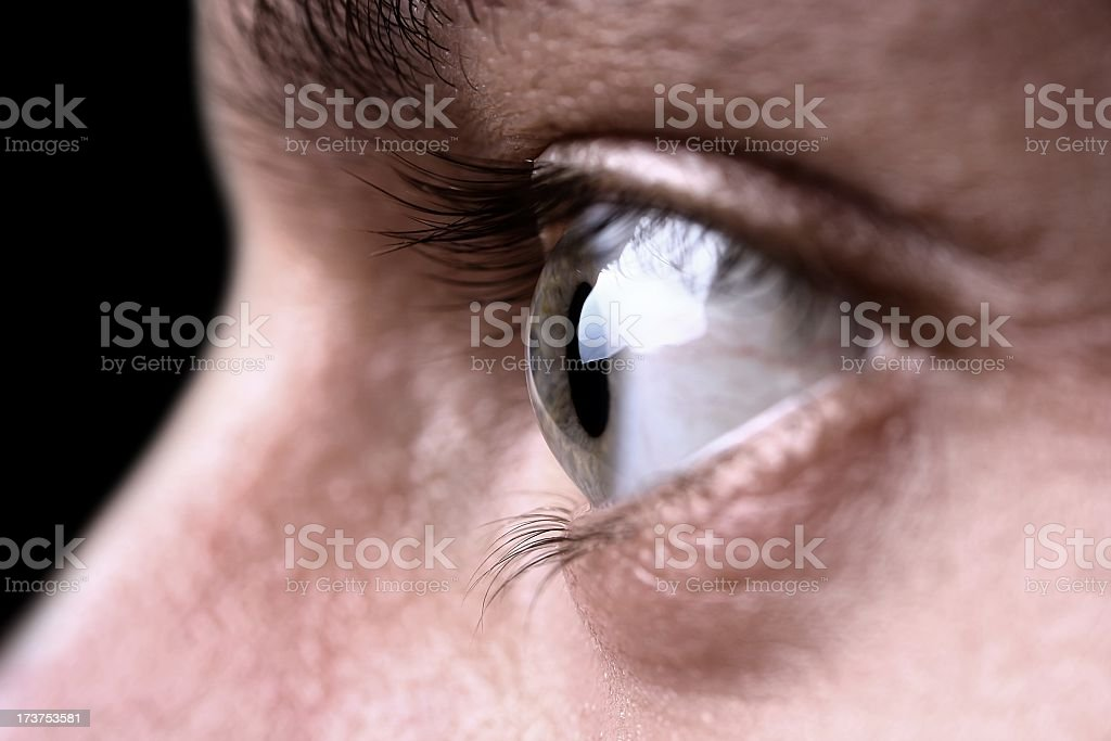 Eye close up with eyelashes and wrinkles royalty-free stock photo