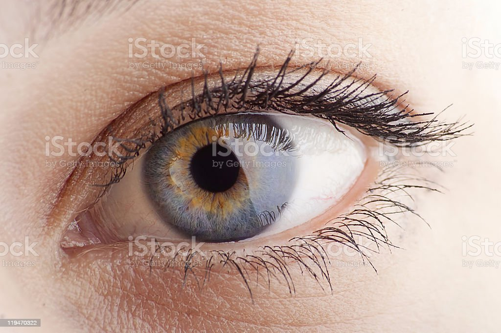 eye closeup stock photo