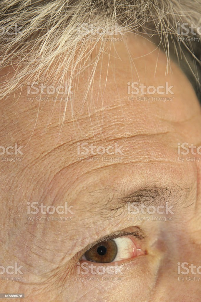 Eye Eyeball Eyelid Eyebrow Forehead Face royalty-free stock photo
