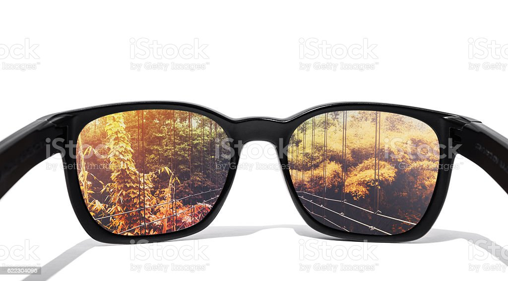 Eye glasses, isolated on white background, with seasons change forest stock photo