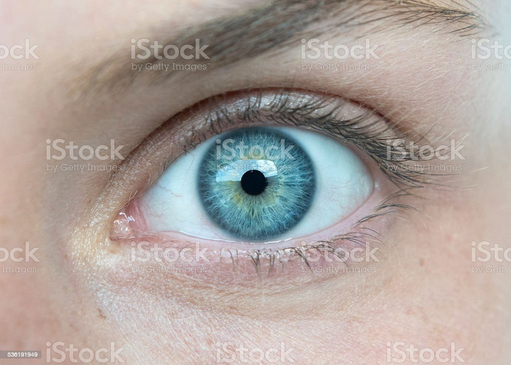 Eye Macro stock photo