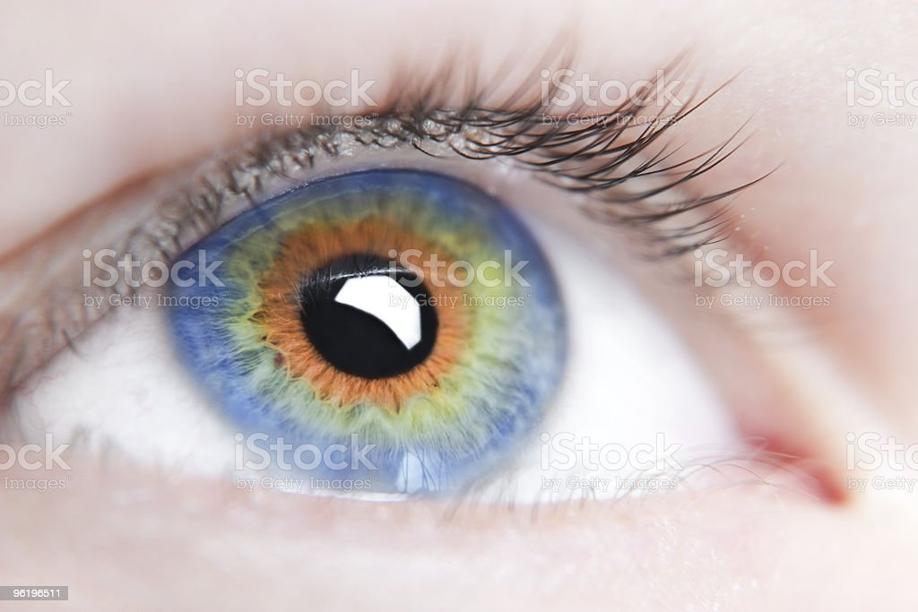 Eye of the person royalty-free stock photo