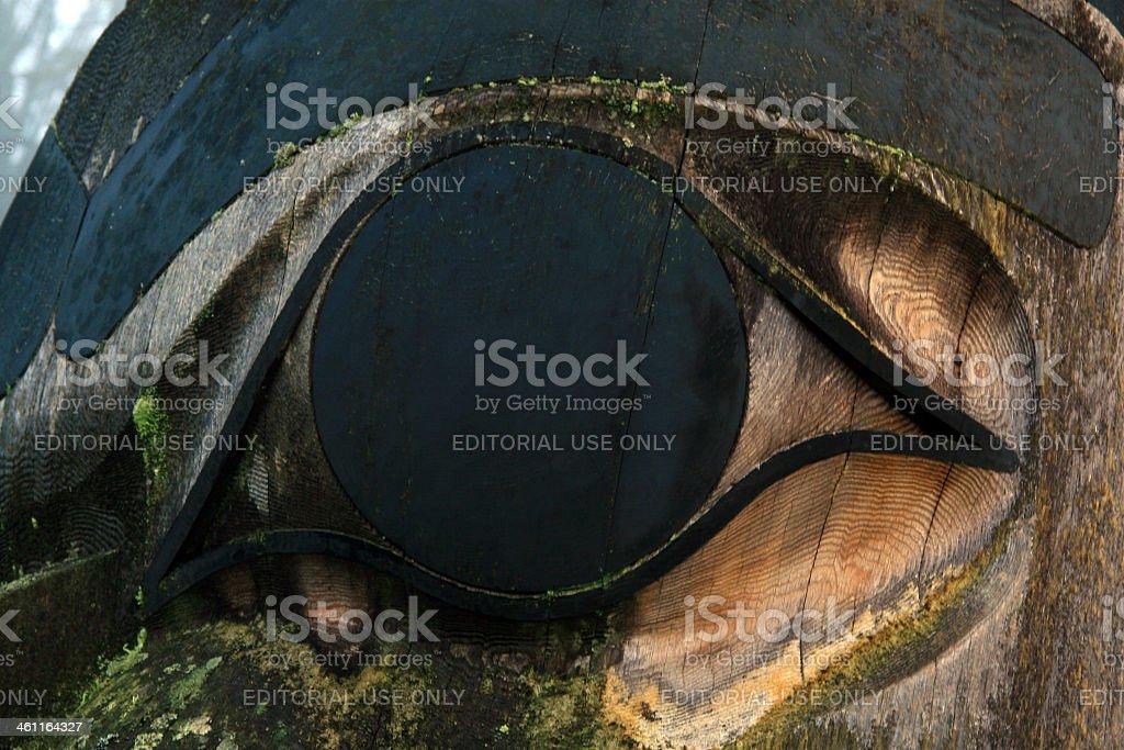 Eye of the Raven stock photo