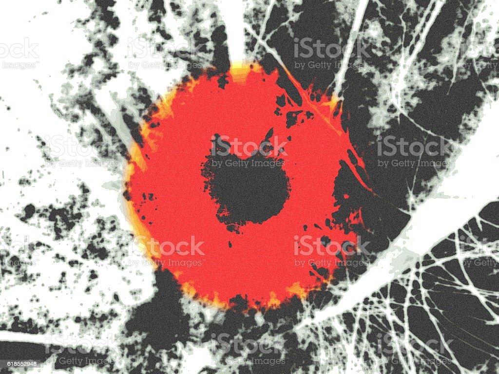 Eye of the Sun stock photo