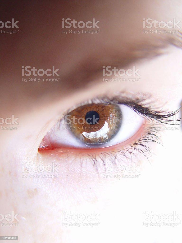 Eye of Woman royalty-free stock photo