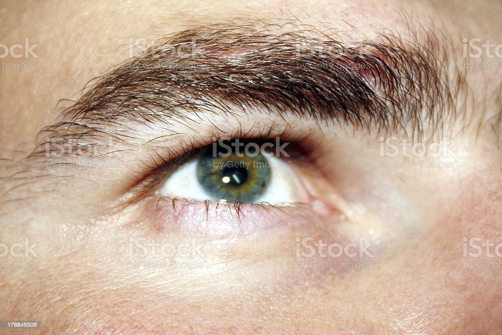 eye royalty-free stock photo