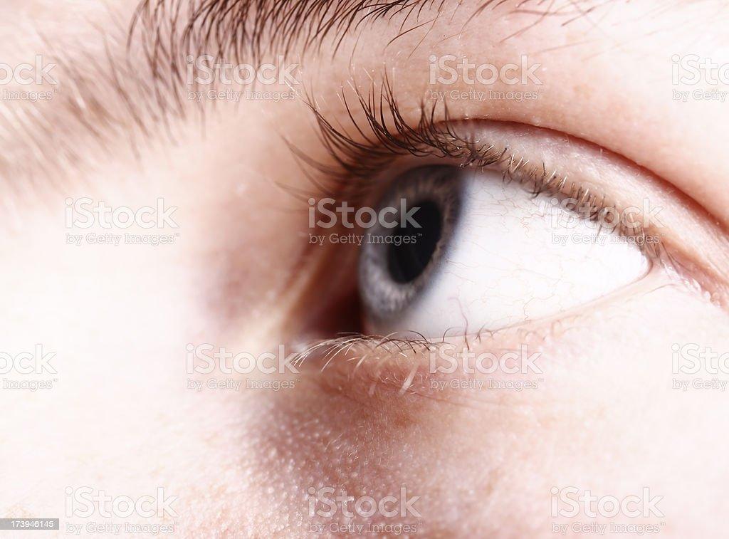 Eye Spy stock photo