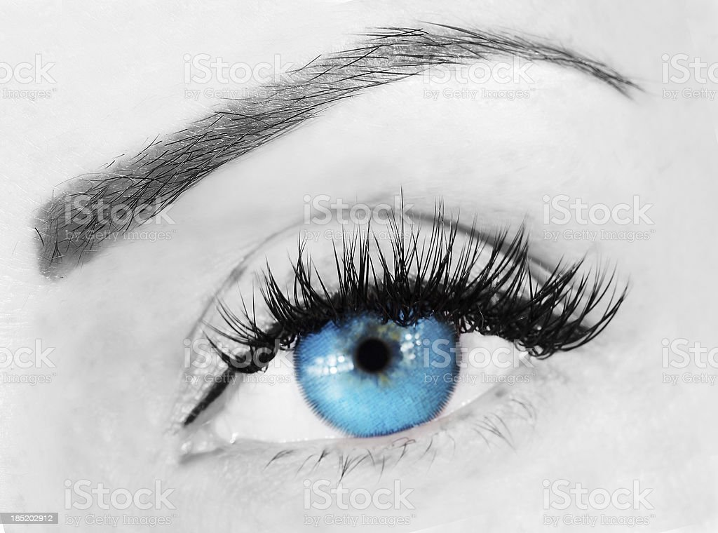 eye with bushy lashes stock photo