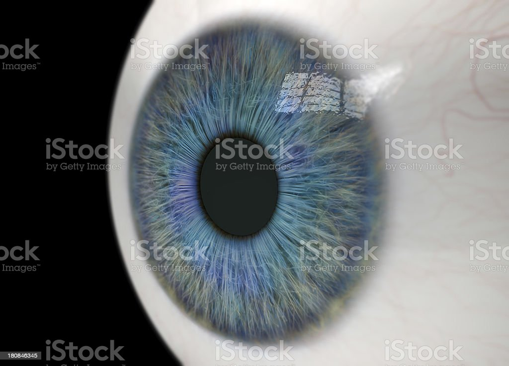 Eyeball Close Up stock photo