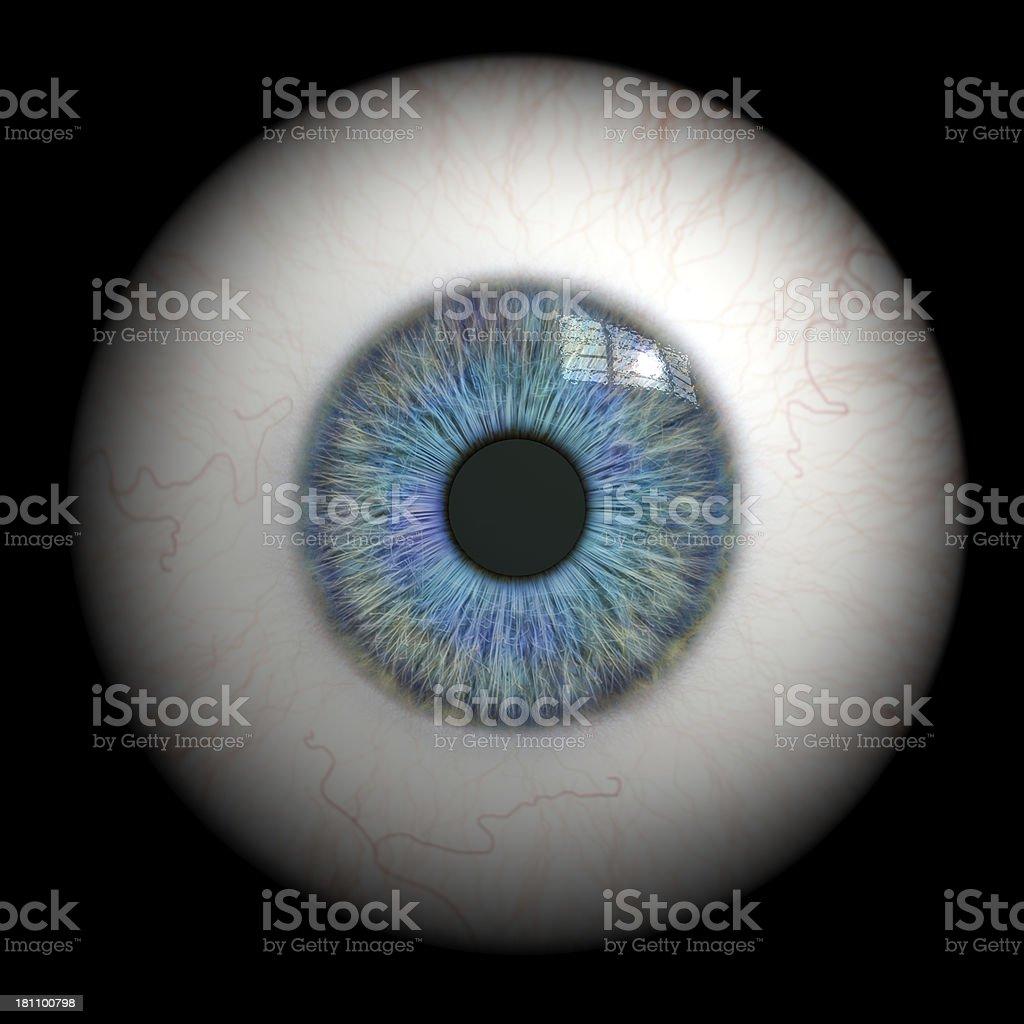 Eyeball close up. stock photo