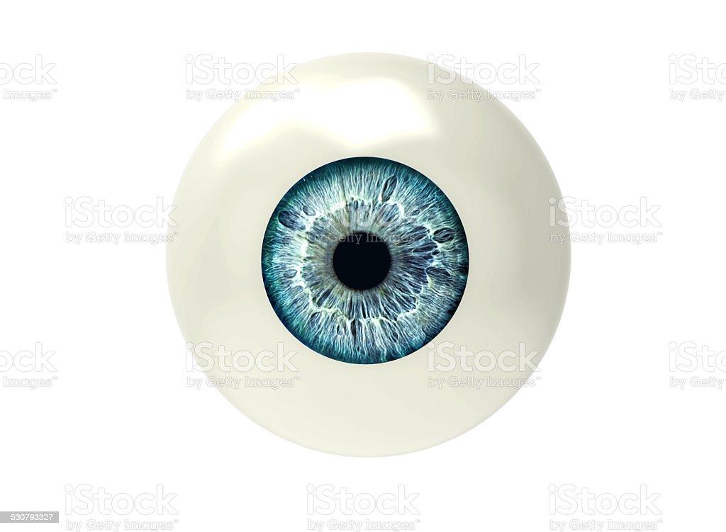 eyeball isolated on white stock photo
