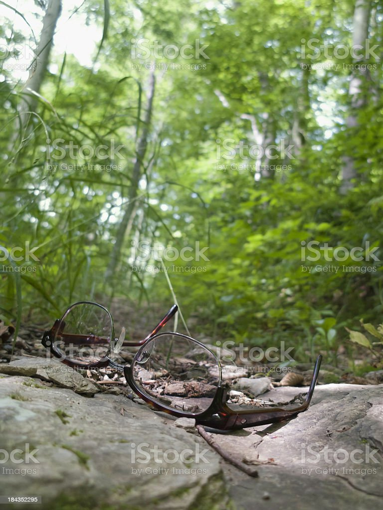 Eyeglasses dropped on Wooded Path stock photo