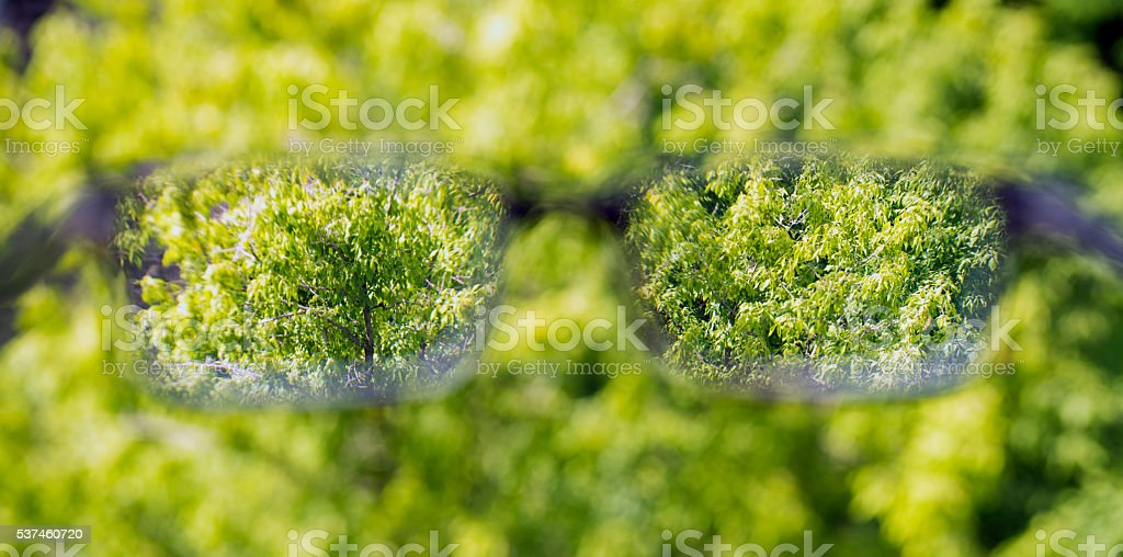 eyeglasses in the hand ove Forest background stock photo